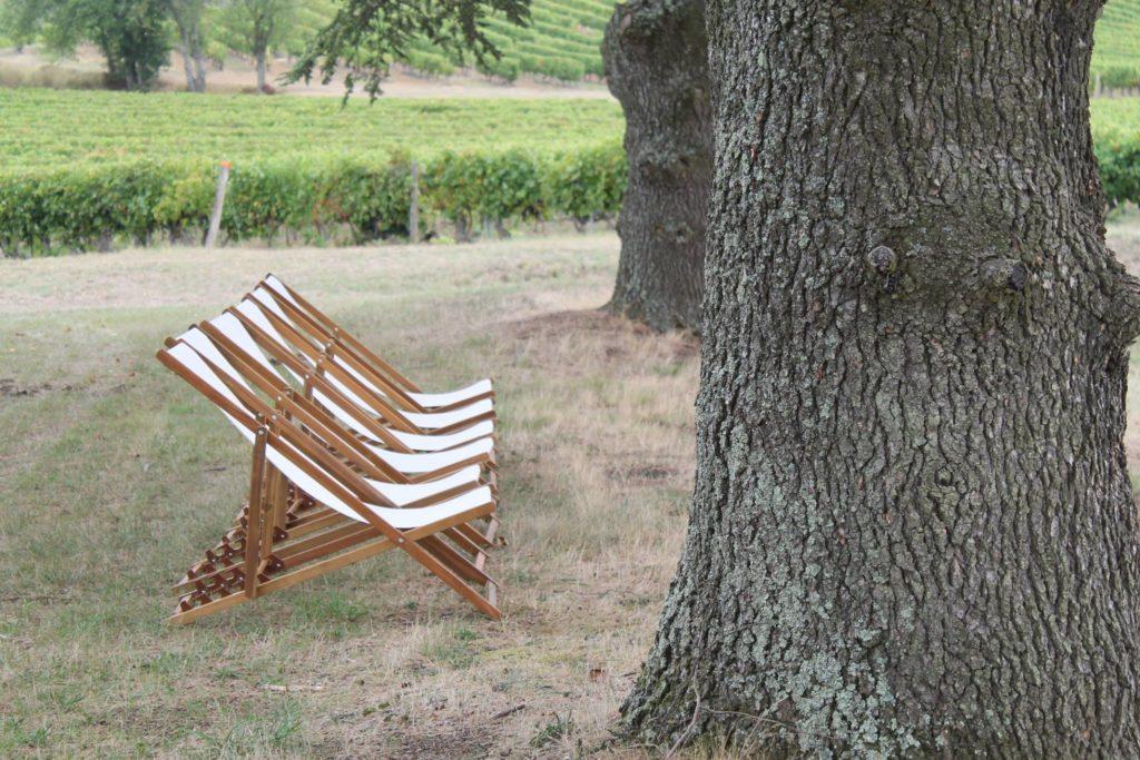 Safer Occitanie - déjeuner dans les vignes