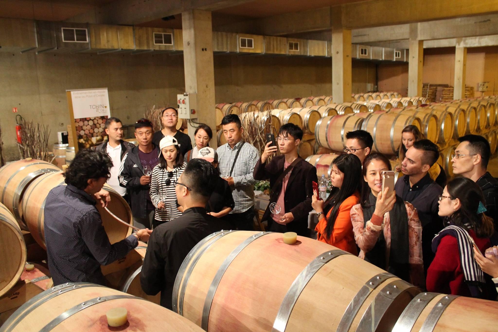 Vignoble : acheteurs chinois à Cadastre avec Vinovalie et TCHIN&Co 1